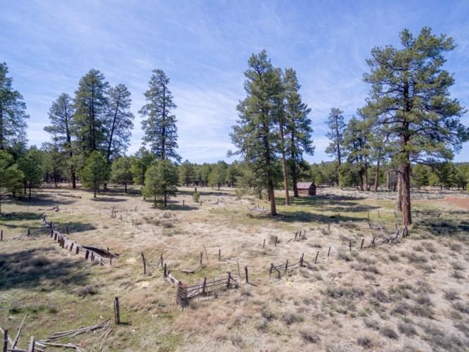 00 Forest Service 140 Road, Williams, AZ 86046
