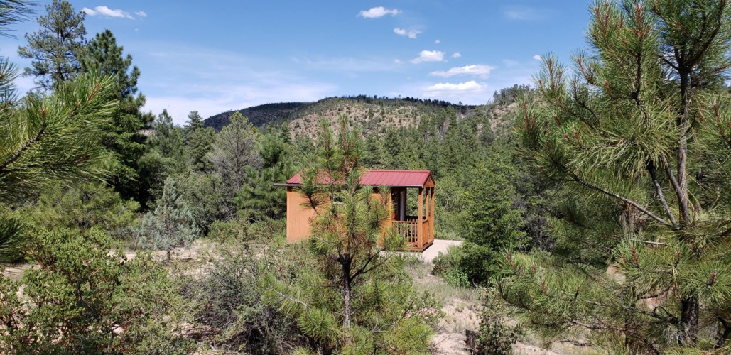 470 Forest Service Rd 512, Young, AZ 85554