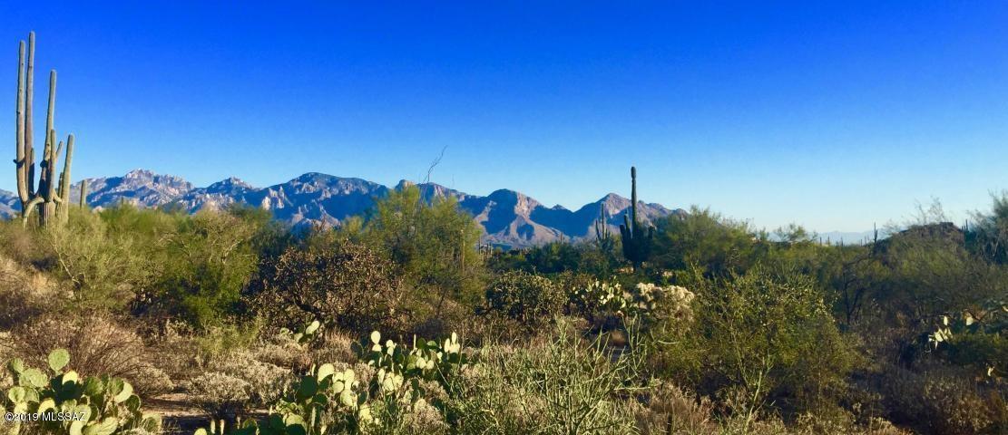 1138 Tortolita Mountain Circle #234, Oro Valley, AZ 85755