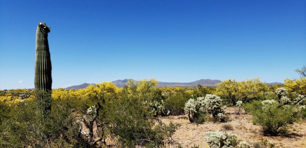 22200BLK S Tocayo Road, Catalina, AZ 85739