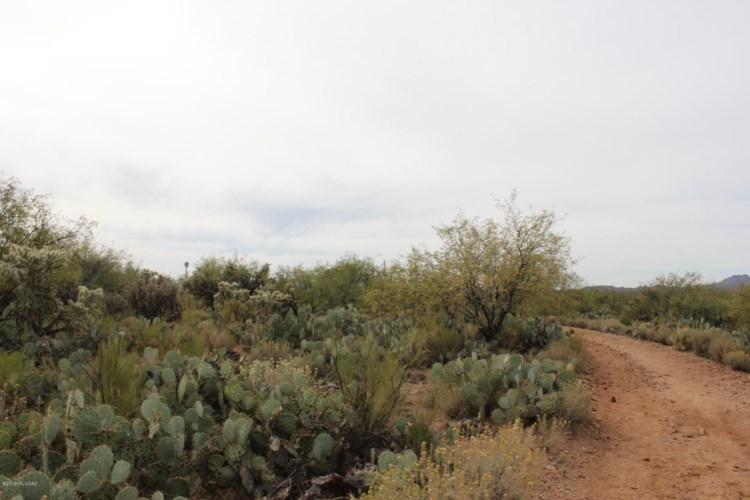 3495 E Golder Ranch Drive, Catalina, AZ 85739