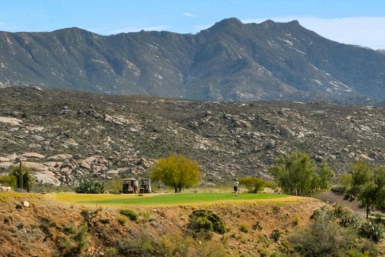 36586 S Cactus Lane, Saddlebrooke, AZ 85739