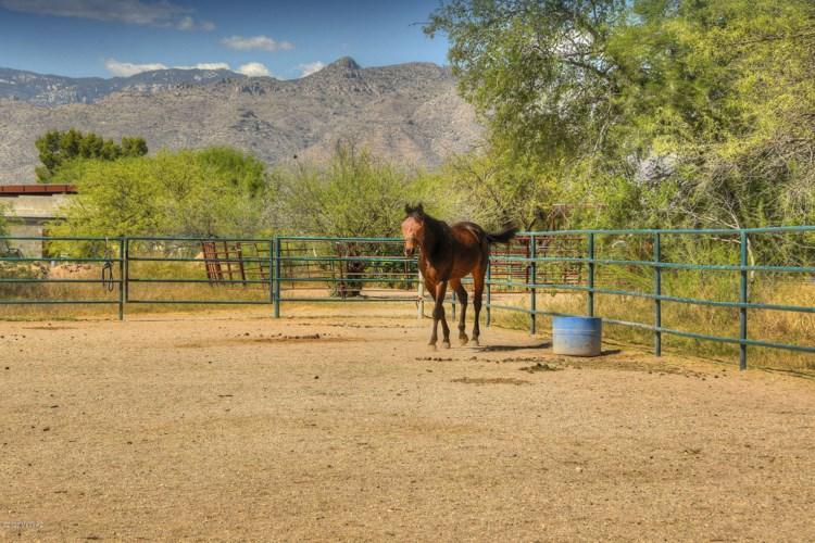 10519 E Tanque Verde Road, Tucson, AZ 85749