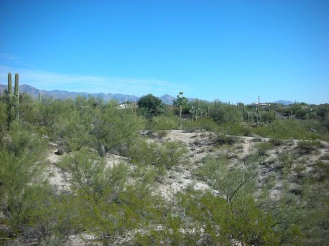 4041 N San Simeon Road #2, Tucson, AZ 85718