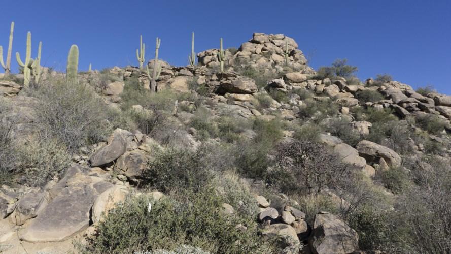 14421 N Phinny Rock Place #48, Marana, AZ 85658