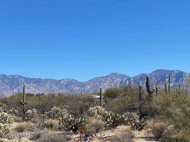 N Camino del Fierro #3, Tucson, AZ 85755