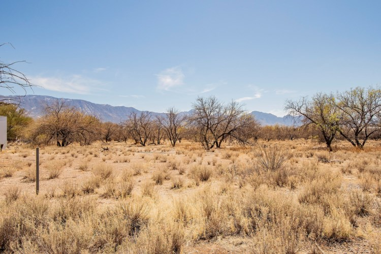16490 N Forecastle Avenue, Tucson, AZ 85739