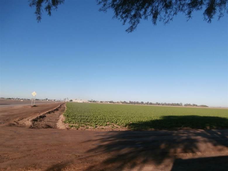 1200 E MAIN ST, Somerton, AZ 85350