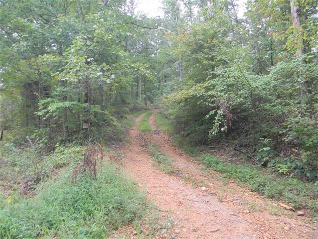 0 Box Hollow Road, Waverly, TN 37185
