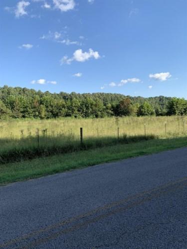 0 Hulsey Branch Rd, Minor Hill, TN 38473
