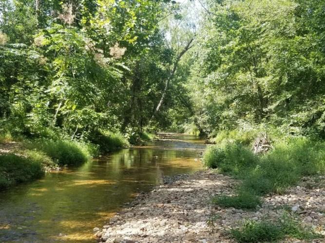 1720B Bear Creek Rd, Collinwood, TN 38450