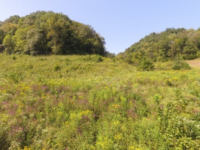 72 .68ac South Fork Road, Whitleyville, TN 38588
