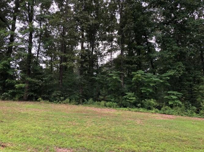 45 Arrowhead Pt, Cedar Grove, TN 38321