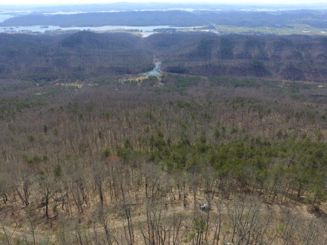 Lookout Mtn Rd, Thorn Hill, TN 37881