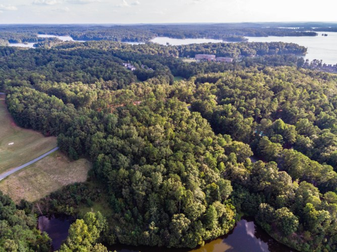 Lot 1 Goose Point, Dadeville, AL 36853