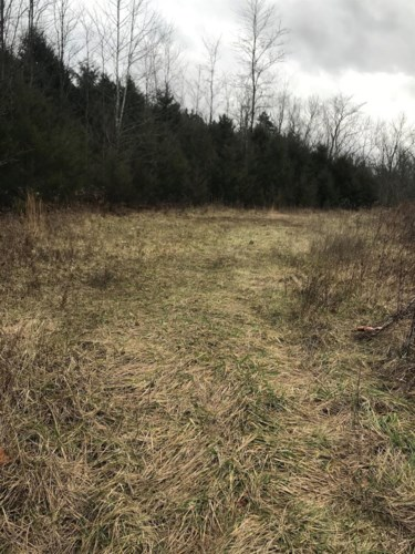 0 Shawhan Road, Berry, KY 41003