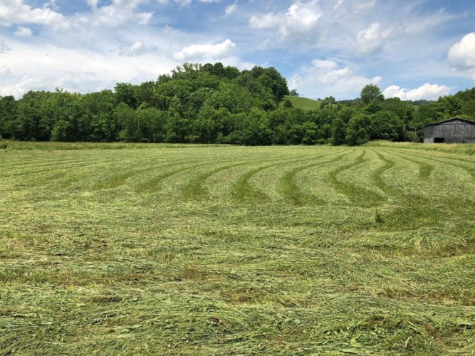 3351 Little South Road, Liberty, KY 40328