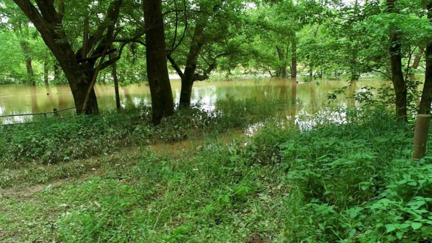 1 Sugar Creek Pike, Nicholasville, KY 40356