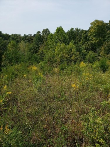 Lot 31 Brittany Drive, Monticello, KY 42633