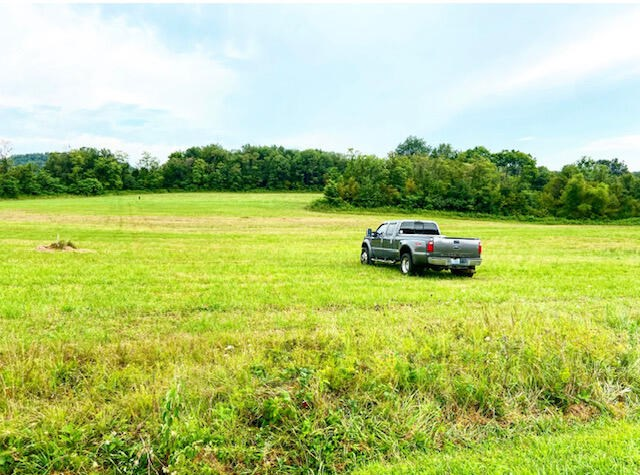 3334 Harmons Lick Road, Paint Lick, KY 40461