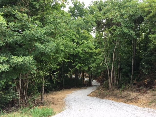 3462 Rector Road, Morning View, KY 41063
