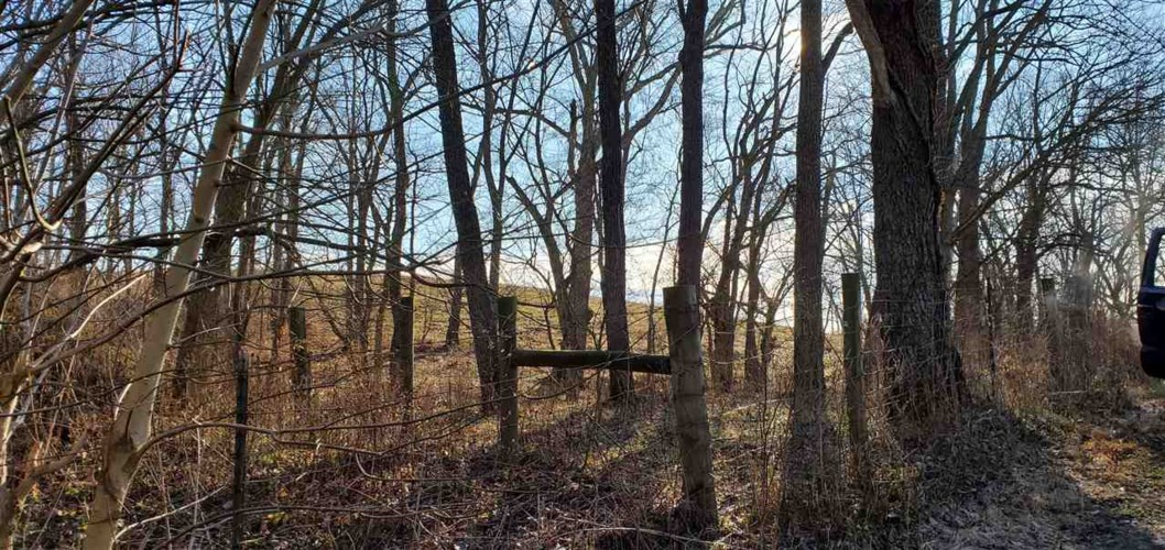 597 Old 3L Highway, Falmouth, KY 41040