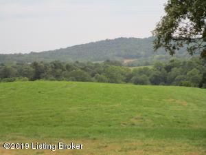 1171 Post Hopewell Rd, Caneyville, KY 42721