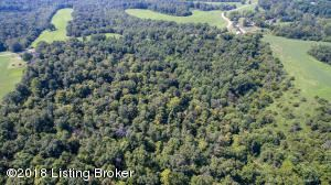 Tract 2 HICKORY RIDGE Rd, Mt Eden, KY 40046