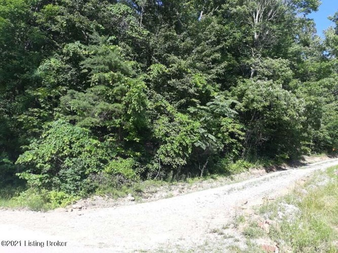 498 Ridge View Dr 6, Mammoth Cave, KY 42259
