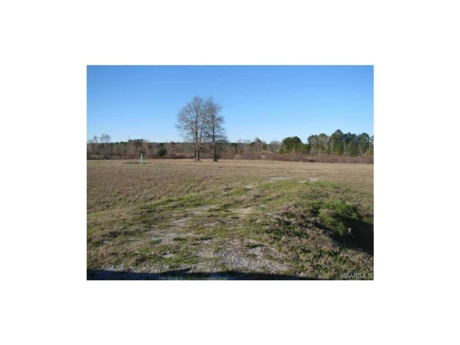 CHANTILLY Place  #5, Pike Road, AL 36064