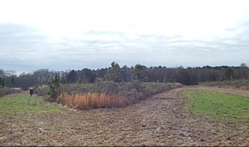 RACE TRACK RD, West, MS 39192