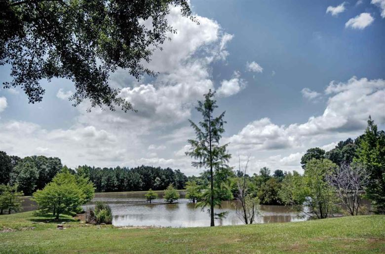 125 CEDAR CREEK RD, Pelahatchie, MS 39145