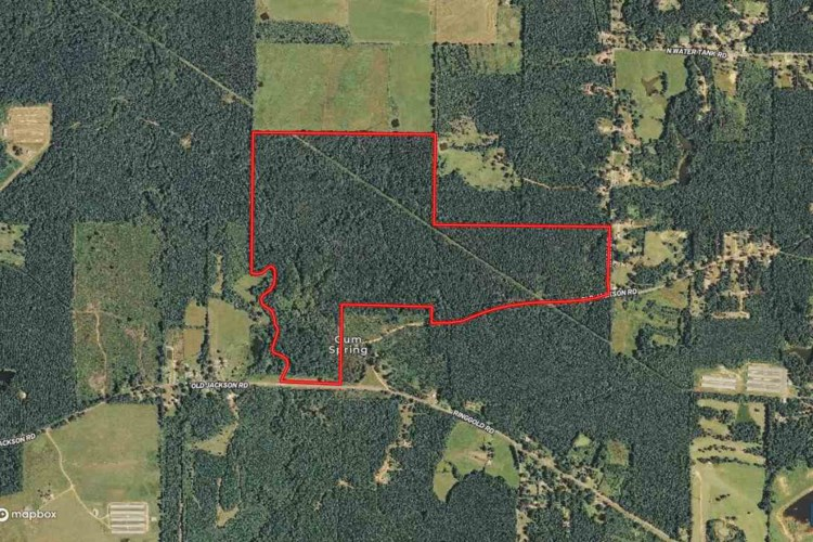 OLD JACKSON RD, Forest, MS 39074