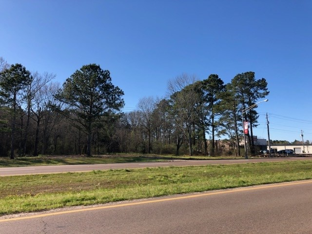 HIGHWAY 35 SOUTH, Forest, MS 39074