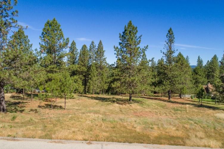 0 Tokayana Ranch Lane, Colfax, CA 95712