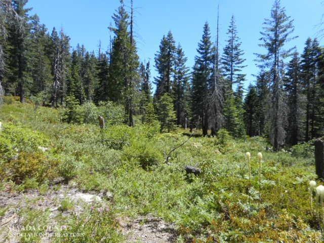 24823 Deadman Creek Road, Nevada City, CA 95959