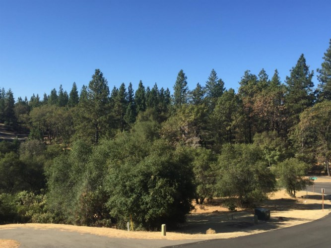 15010 Grand Knoll Lane, Meadow Vista, CA 95722