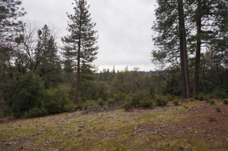 0 Los Robles, Meadow Vista, CA 95722