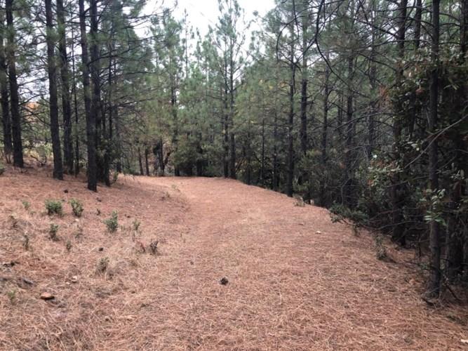 0 Tanyard Lane, Pine Grove, CA 95665