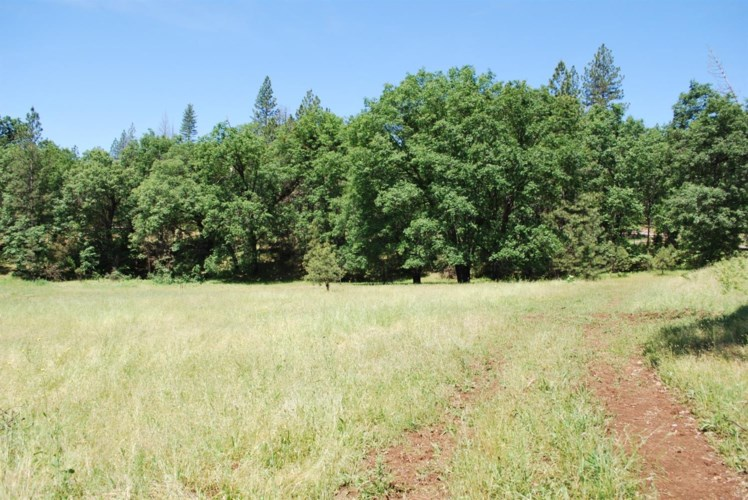 10894 Old Yosemite, Coulterville, CA 95311