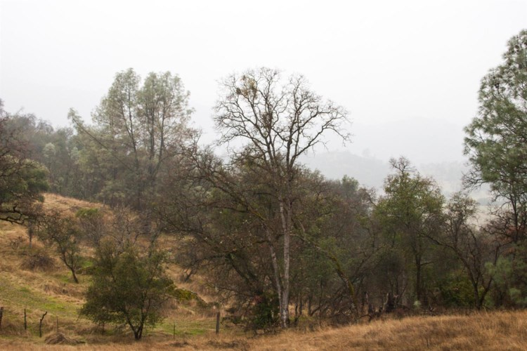 0 Highway 49, Coulterville, CA 95311