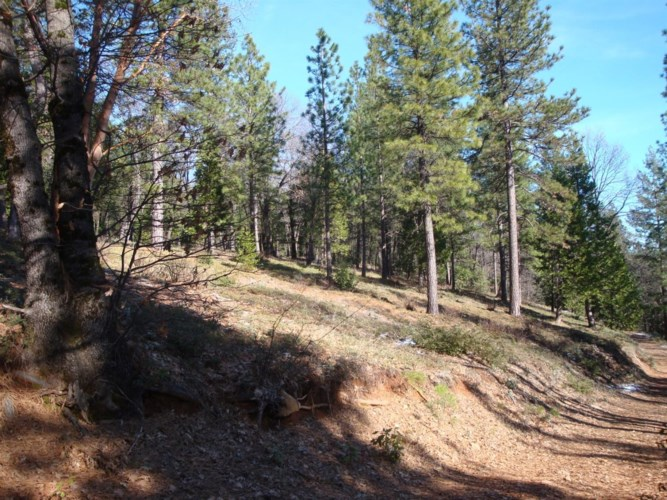 0 Foresthill Road, Foresthill, CA 95631