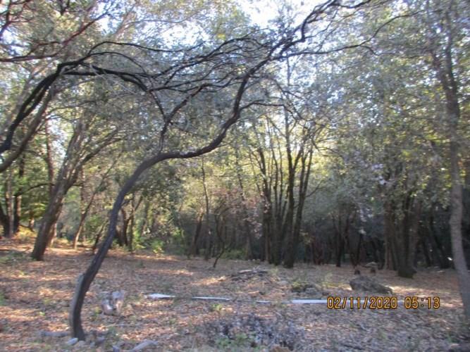 18600 Mountain View Drive, Pine Grove, CA 95665