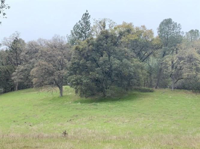 0 Cedar Pines, Fiddletown, CA 95629