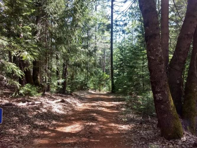 13105 Jupiter Drive, Grass Valley, CA 95945