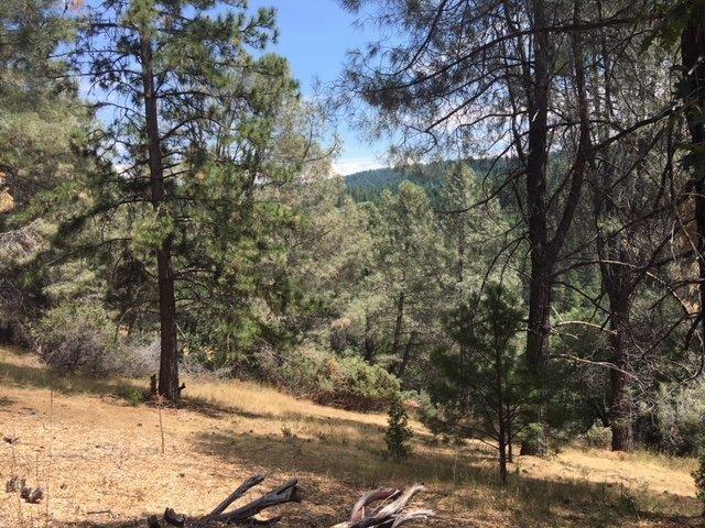 5331 Five Spot Road, Pollock Pines, CA 95726