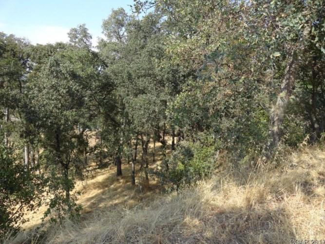 2784 Hoffman, Valley Springs, CA 95252