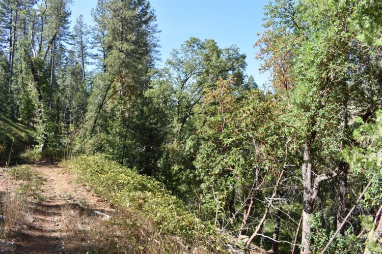109 Leahy Road, Grass Valley, CA 95945