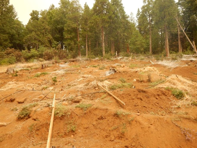 0 Debron Ct Lot S, Pollock Pines, CA 95726