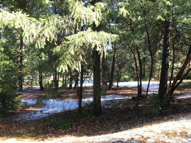 26441 Golf Links Drive, Pioneer, CA 95666